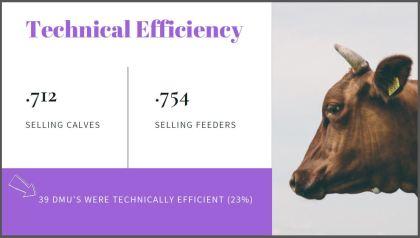 technical eff slide