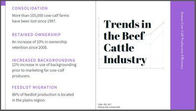 trends slide